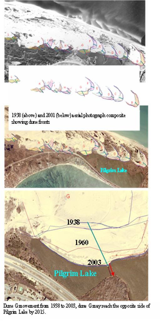 The Relation between 20th Century Dune Migration and Wetland ... on